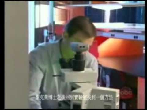 B  Walter Speical CNABC NEWS 芭芭拉沃尔特斯 讨论 白藜芦醇防老化重要性