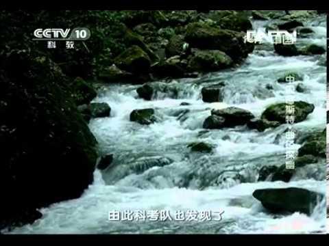 地理中国 《地理中国》 20130418 中国喀斯特·曲径探幽