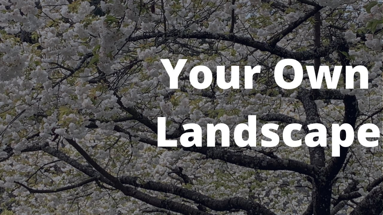 Elements of a Brief: Your Own Landscape