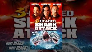 3 برئاسة هجوم سمك القرش