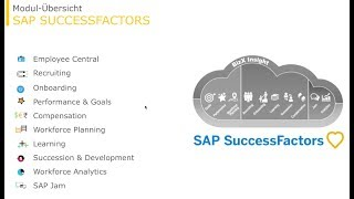 SAP SuccessFactors Look & Feel