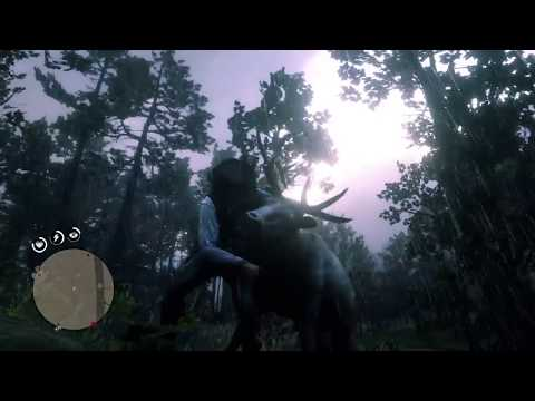 Red Dead Redemption 2 - Elk clean kill the safest way