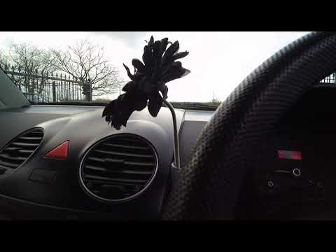 2011/11 VW BEETLE COUPE LUNA FOR SALE @VIEW AUTOMOTIVE