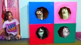 DIY 2 этажный цветной ДОМ 4 комнаты Для котиков из Картона 👍