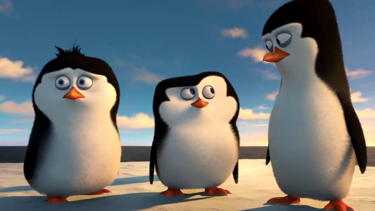 DIE PINGUINE AUS MADAGASCAR Trailer & Filmclip HD - YouTube