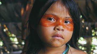 AMAZONAS: документальный проект о племенах Амазонии