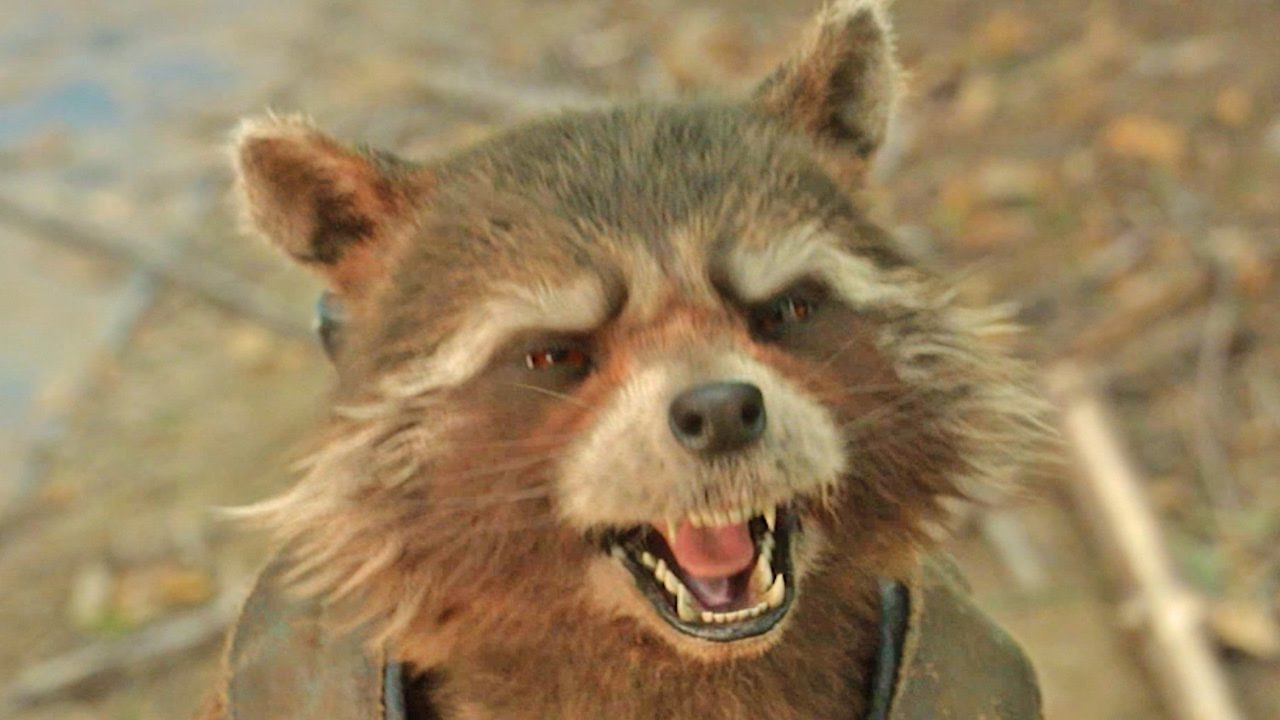 Trash Panda Guardians Of The Galaxy Vol 2 Official First Look