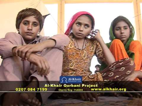 AL KHAIR - PAKISTAN QURBANI SINDH FLOOD PACKAGE
