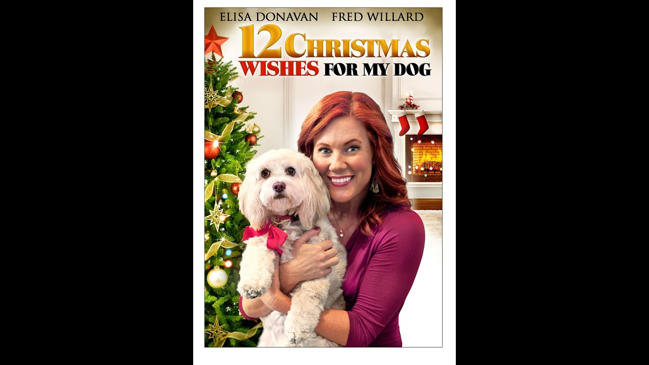 12 christmas wishes for my dog trailer - 12 Wishes Of Christmas