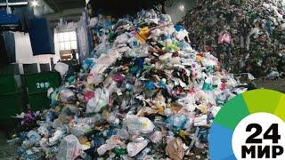 Ноль отходов: можно ли жить без мусора / Видео