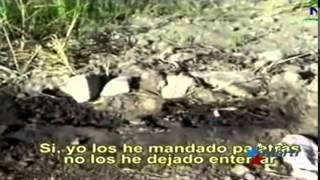 Restos humanos expuestos en cementerio de Holguin