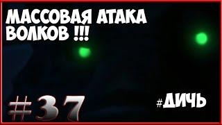 [The Long dark ]  # - 37 Массовая атака волков.