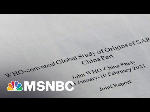 WHO Report On Virus Origins Says Lab Leak Is Unlikely | Morning Joe | MSNBC