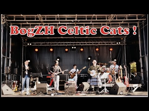 BogZH Celtic Cats is listed (or ranked) 64 on the list The Best Celtic Bands & Artists