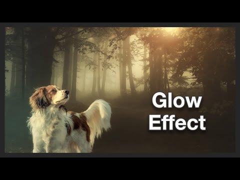 Dog Photo | Glow Effect | Photoshop | Speed Edit