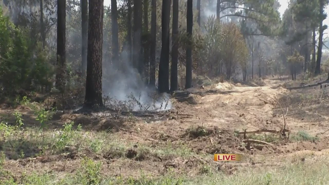 WJBF News Channel 6 at Noon, I-20 brush fire
