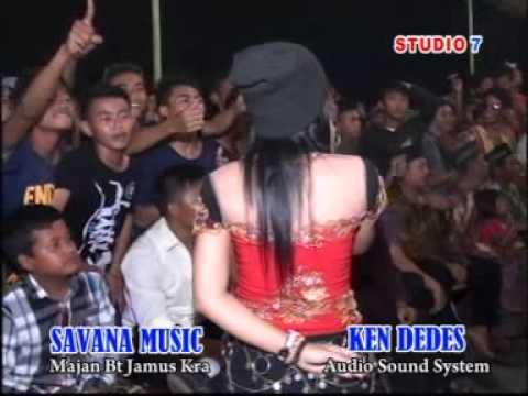 Kecewa - Savana Dangdut Reggae