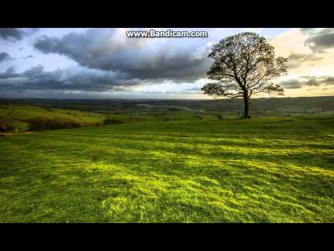 Трек В.Бутусов - песня В.Цоя Звезда по имени солнце DJ HIT URAL REMIX в mp3 256kbps