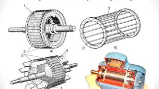 Крыжановская Р В  Электротехника урок 4  Устройство и принцип действия асинхронного двигателя(, 2016-02-19T05:36:48.000Z)