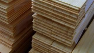 Bambu Laminasi For Better Future