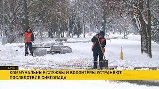 Завалило снегом: как коммунальщики сражаются с непогодой?