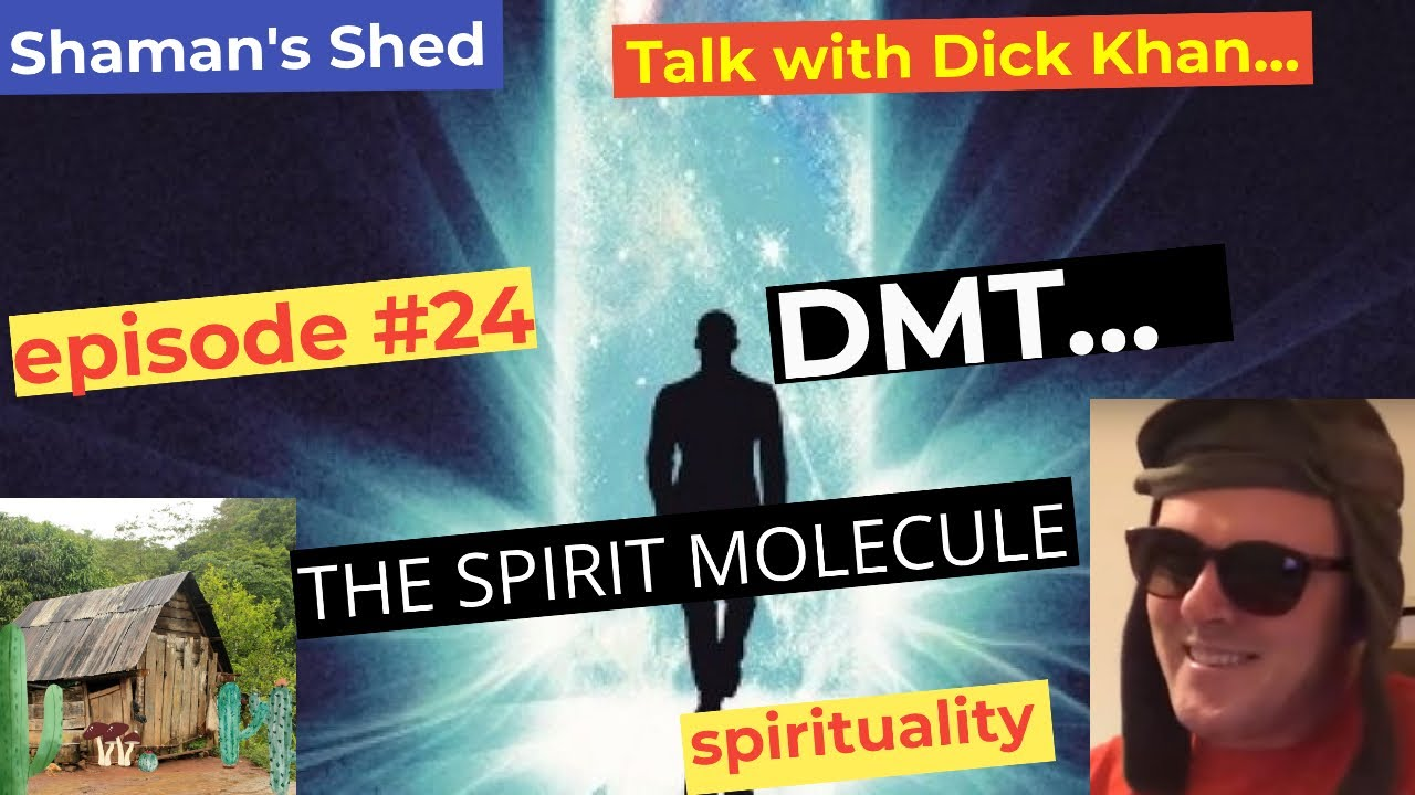 #24 Talk with Dick Khan about DMT   DMT Entities   The portal to the other side   Dmt and the occult