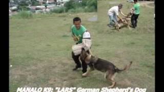 "German Shepherd Manalo K9's ""lars"" Patrol K9 (vintage Video)"