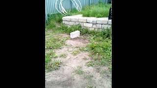 видео Состав и применение аммиачной селитры