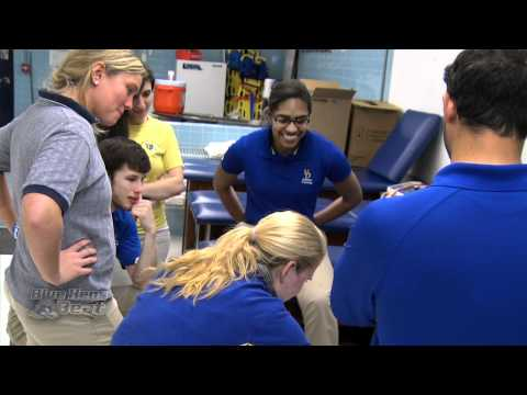 Delaware Blue Hens Athletic Trainers