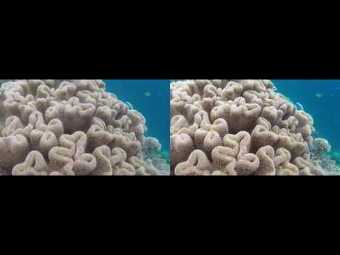 Maldives 2014 Angsana Ihuru Machchafushi 3D SBS Google cardboard VR