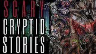 15 TRUE Scary Cryptid Stories (Vol. 19)