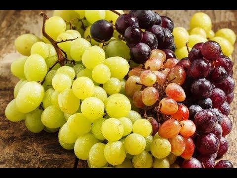Светлый или темный виноград полезней и кому нужно есть эту ягоду
