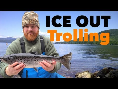 Western Maine Spring Trolling - L.L. SALMON CATCH 'N COOK!