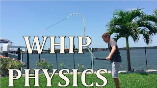 The Science of Cracking a Whip