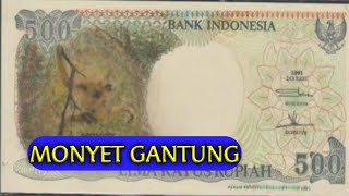 Jangan mau tertipu oleh uang kuno 500 rupiah Monyet Gantung tahun 1991