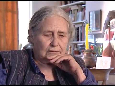 Doris Lessing - The lamentable gap between writers and academics  (8/26)