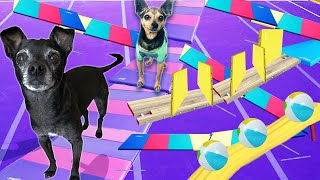 Last To Leave CRAZY MAZE WINS $10,000! (or Dog Treats)