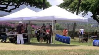 Hawaii Rottweiler Specialty Show
