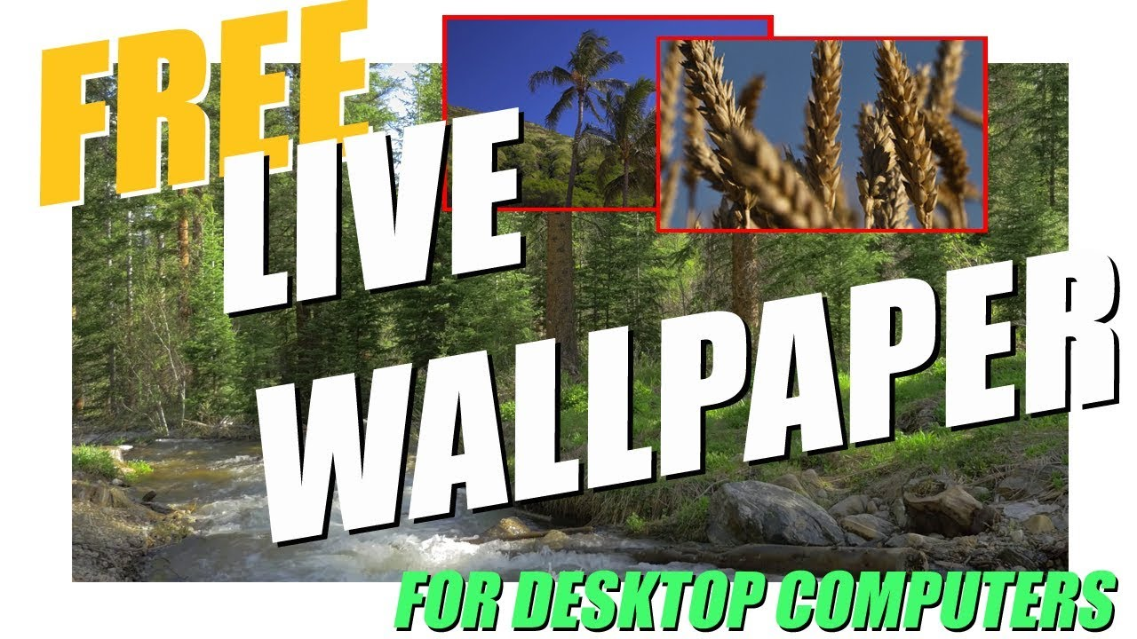Live Video Wallpaper Windows 10 8 7 Desktop And Laptop Youtube