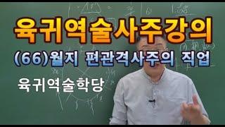 육귀역술사주        사주강의      육귀역술학당    편관격의  직업