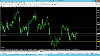 M's and W's Chart Formation Trading