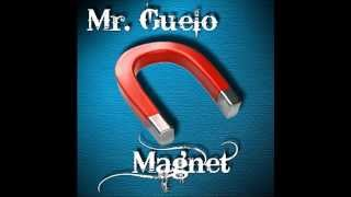 Mr. Guelo-Magnet (Original Mix)