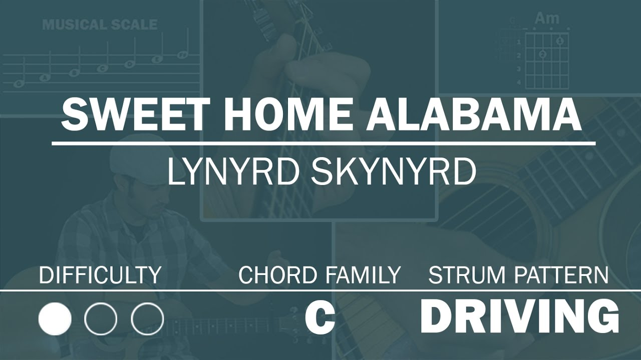 I miss 'ole' 'bamy once again. Sweet Home Alabama Lynyrd Skynyrd How To Play Acoustic Version Beginner Guitar Lesson Youtube