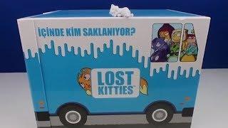 lost kities sevimli kediler saklambaç oynuyor? Hadi bulalım şunları! Bidünya Oyuncak