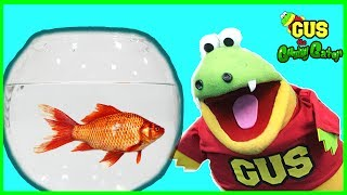 Buying First Pet Fish from PetSmart Family Fun Trip animals toys with Gus the Gummy Gator