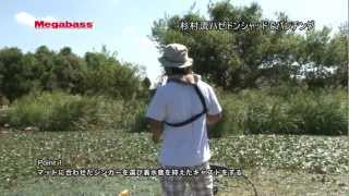 【Megabass Online Shopはこちら】 HAZEDONG SHAD 3inch:http://jp.megabassstore.jp/fs/megabass/c/lure-hazedong-shad-3inch HAZEDONG SHAD ...