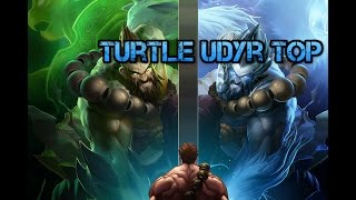 Turtle Udyr Top