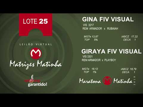 LOTE 25 Matrizes Matinha 2019