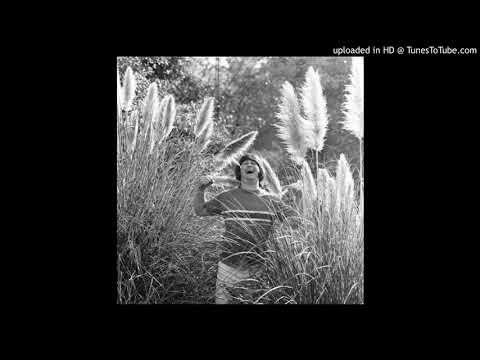 Brian Wilson & Carole King - I'm into Something Good mp3
