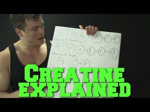 creatine-explained:-parents,-age,-water-weight,-is-it-safe,-should-you-take-it?